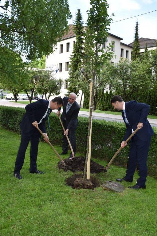 tri osebe sadijo drevo v parku Janeza Drnovška